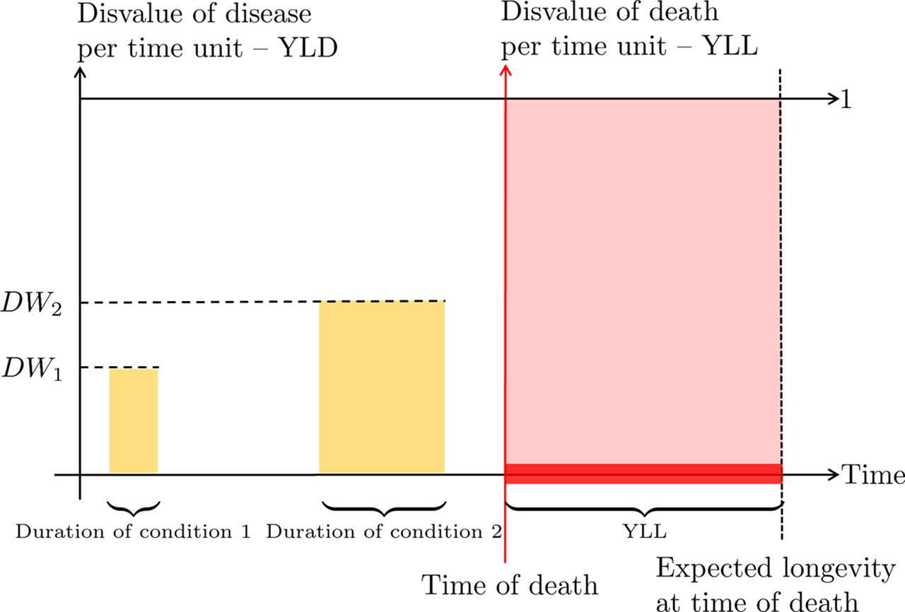 01958f03683 The disvalue of death in the global burden of disease | Journal of ...